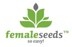 Fast Nevilles Feminised Seeds