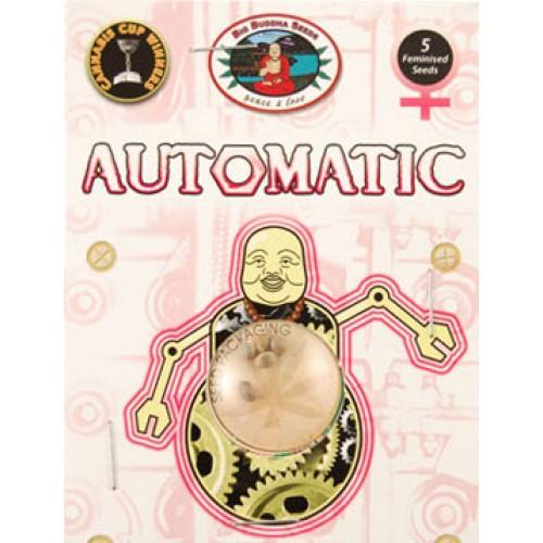 AUTOMATIC Feminised Seeds